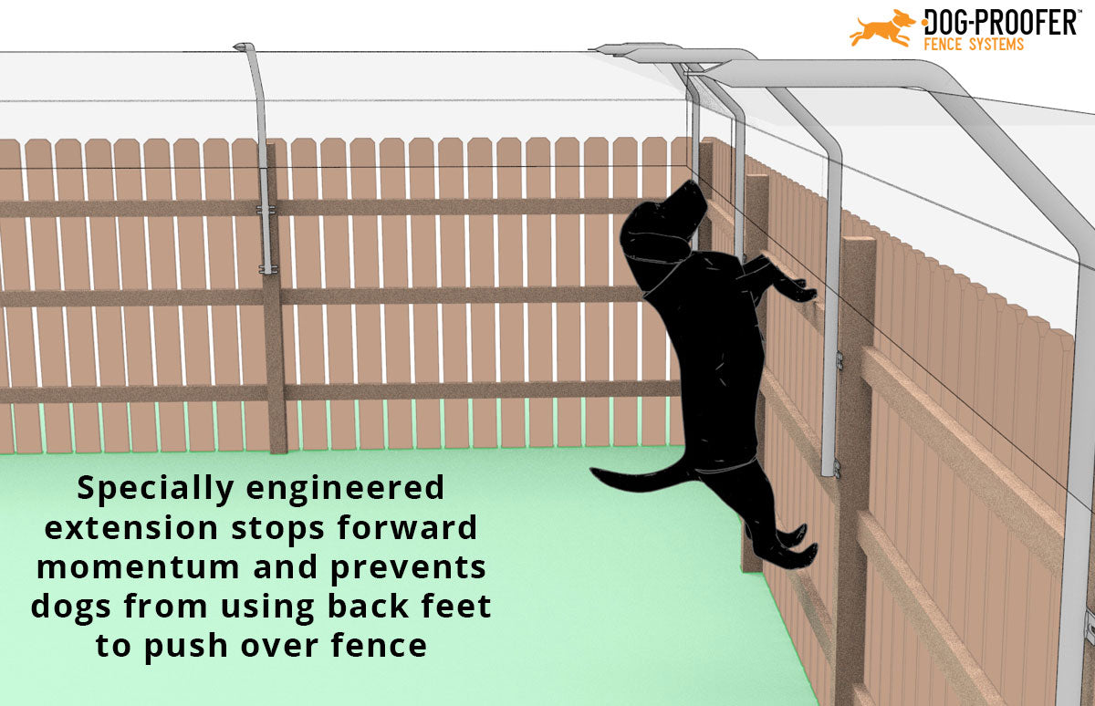 Fence extension to stop dog jumping over fence