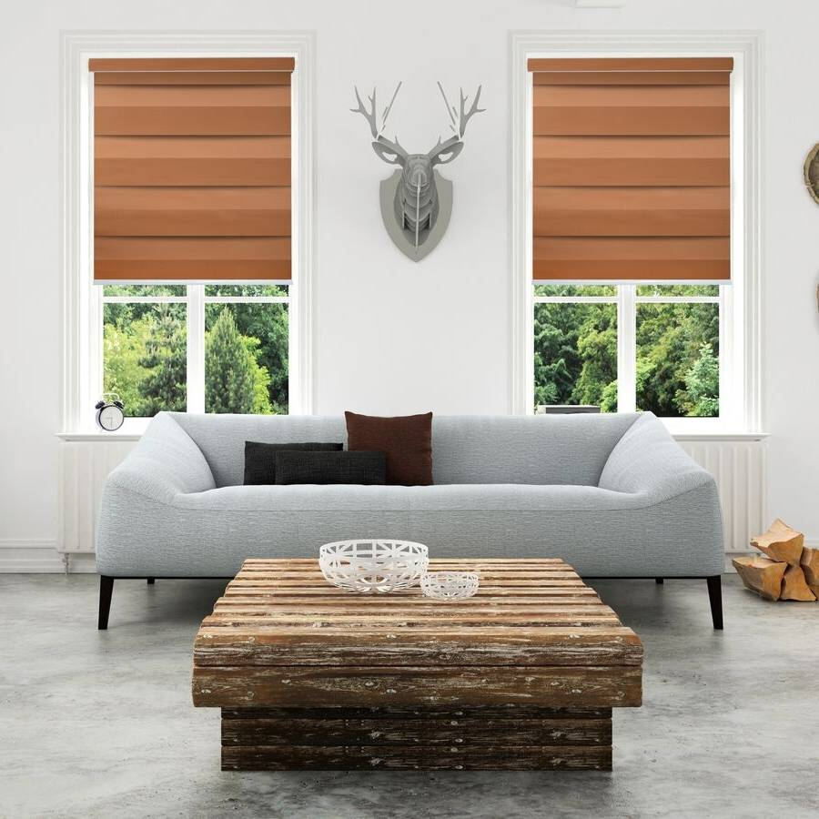 Z-TS05 Brown Tisa Classic Zebra Shades Blinds