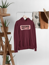 "Load image into Gallery viewer, ""FRIENDS DON'T LIE""- WINTER HOODIES - ANTHERR"