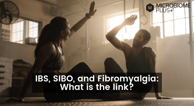 IBS, SIBO, AND FIBROMYALGIA: WHAT IS THE LINK?