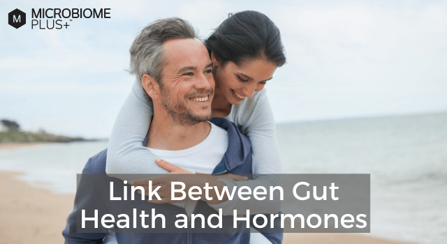 Link Between Gut Health and Hormones