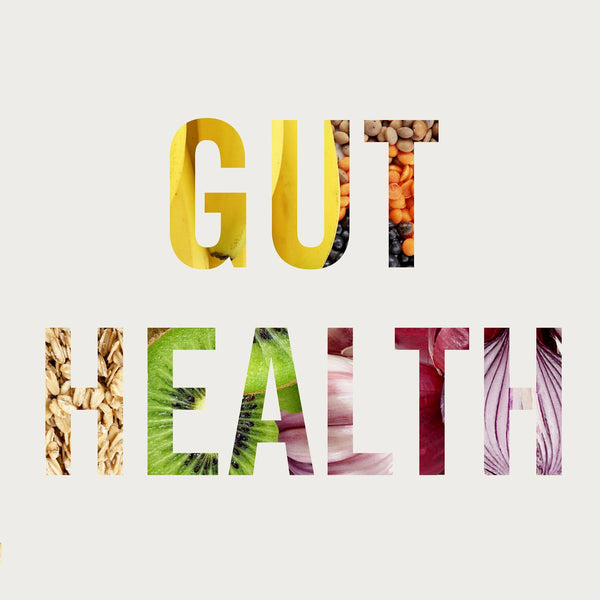 Why a healthy gut is crucial and how Structured Silver helps