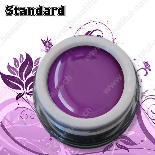 Farbgel Standard Purple Velvet 5Ml - Beautiful Nails