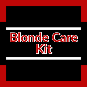 Blonde hair care silver blonde natural gray care kit Redken blondes ShopMBSalon.com