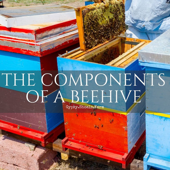 components of a beehive and their functions for the bee colony gypsy shoals farm