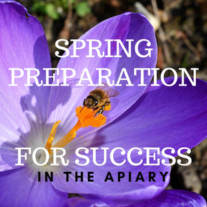 Spring Preparation for Success in the Apiary