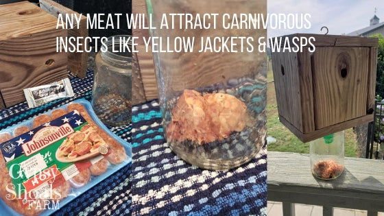 ANY MEAT WILL ATTRACT CARNIVOROUS INSECTS LIKE YELLOW JACKETS & WASPS