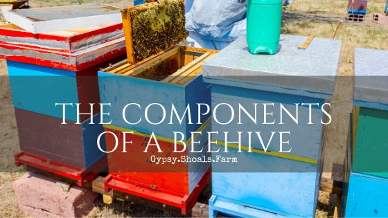 THE COMPONENTS OF A BEEHIVE gypsy shoals farm