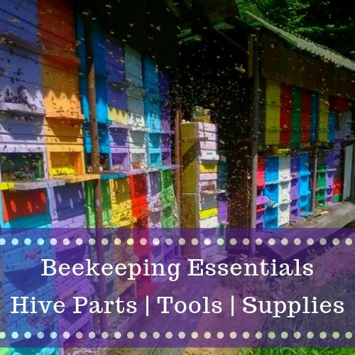 apiary essentials collection beekeeping supplies tools hive parts gypsy shoals farm