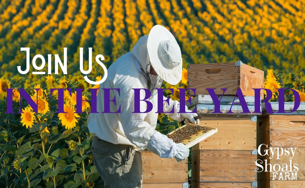 beekeeping educational resources from Gypsy Shoals Farm