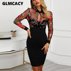 Mesh Bodycon Floral Dress