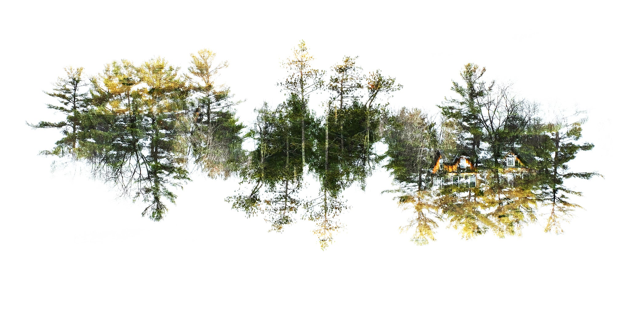'Hiding Place' - Inverted Double Exposure