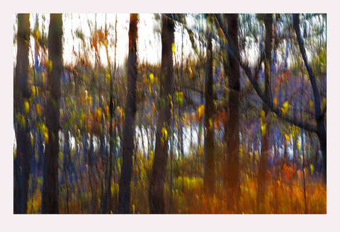 'Northern River' - Intentional Camera Movement