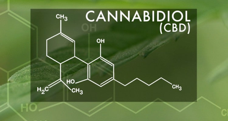 Benefits of CBD Get National Attention