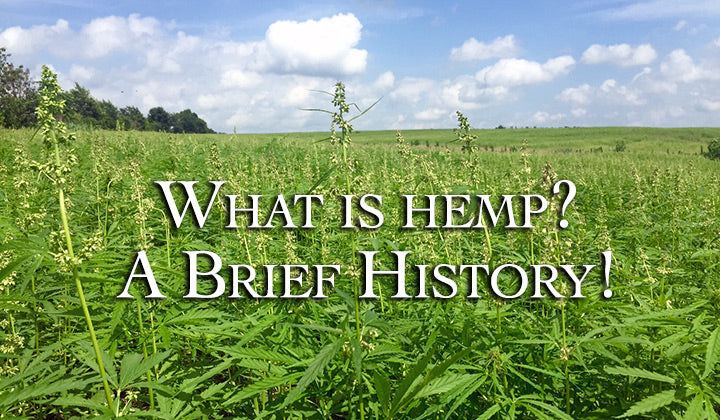 What is Hemp? A Brief history!