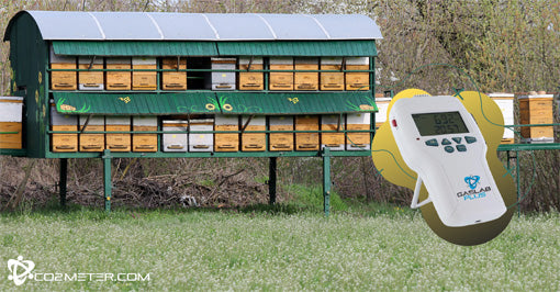 Measuring CO2 Levels for Bees