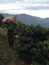 Colombia - Green Coffee
