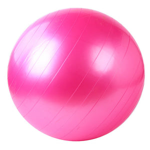 Discounted Price Home Exercise Gym Ball with Premium Quality