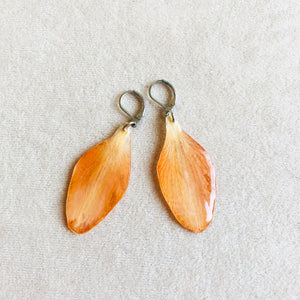Tulip petals earrings