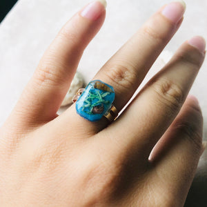 Summer | Sea ring