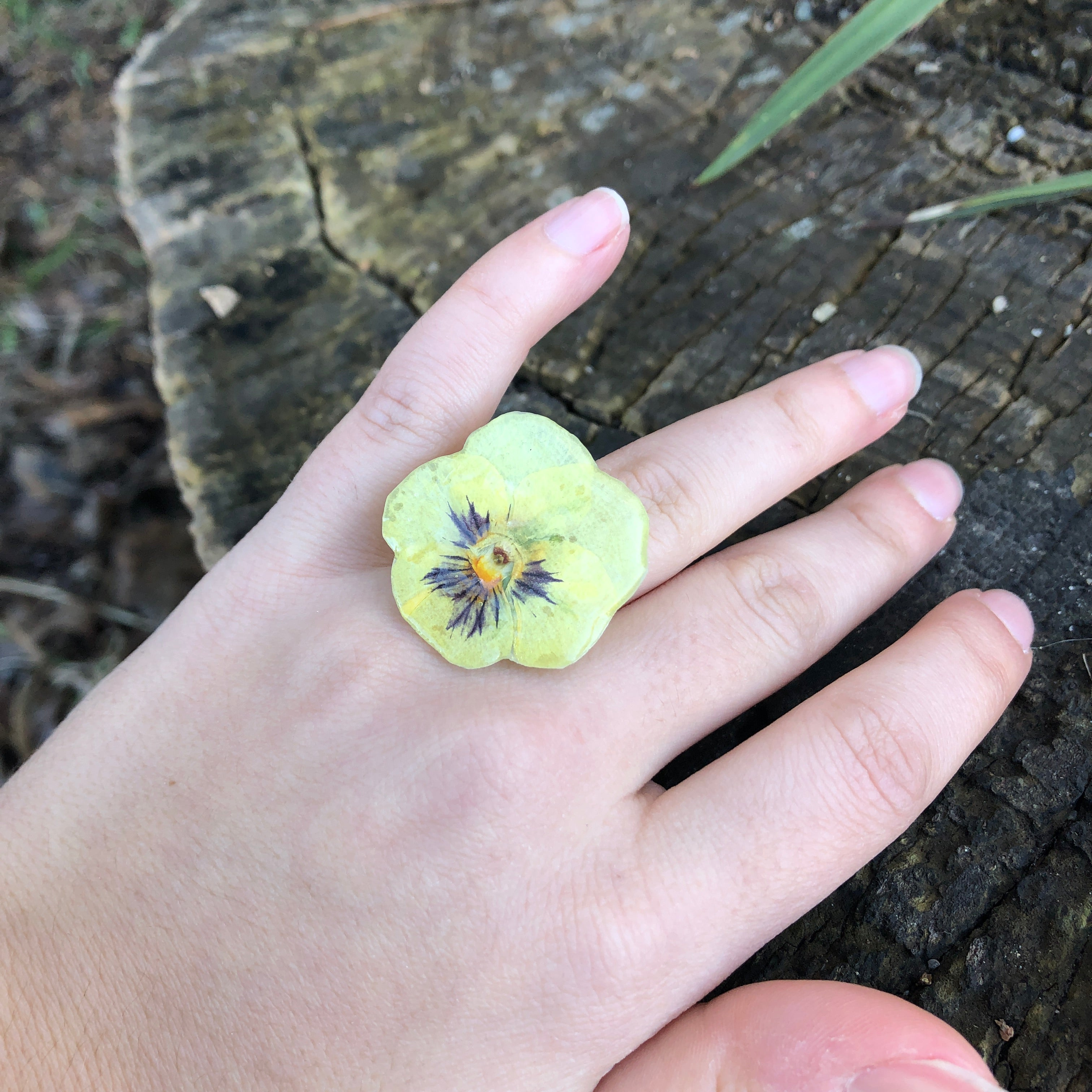Yellow pansy ring