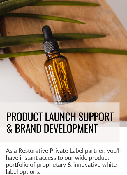 Product Launch Support & Brand Development