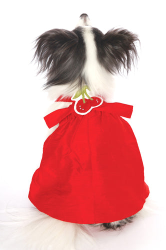 Custom Red Silk Dog Dress with additional attachments