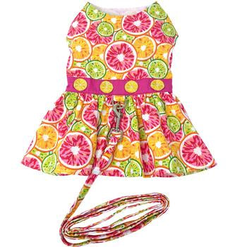 Citrus Slice Dog Dress with Matching Leash