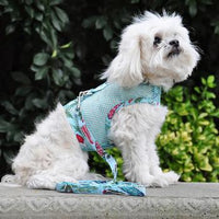 Cool Mesh Dog Harness with Leash - Surfboards and Palms