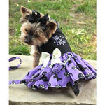 Halloween Dog Harness Dress - Too Cute to Spook - Choke Free