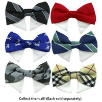Interchangeable Black Bow Tie Collar Set