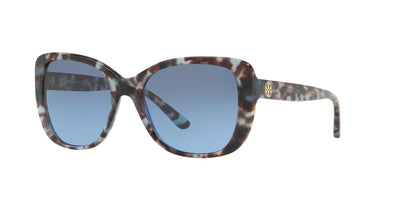 16928F - Blue Tortoise - Grey Blue Gradient