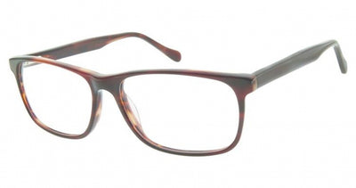 Aristar AR18653 Eyeglasses