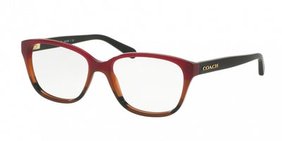 Coach 6103 Eyeglasses