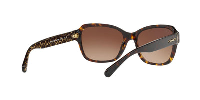 550713 - Dark Tortoise - Brown Gradient