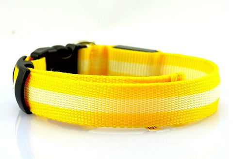 Safety Light Pet Collar
