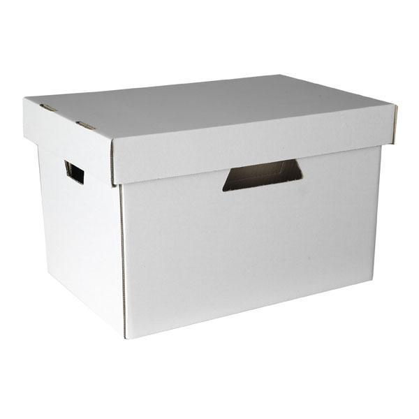 ACCO Esselte Archive Storage Box With Lid - White