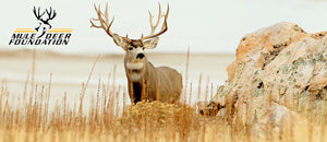 Big Sky Canvas - Mule Deer Foundation