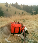 Dog Hiking Packs