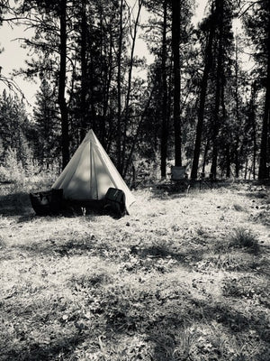 tent in black and white