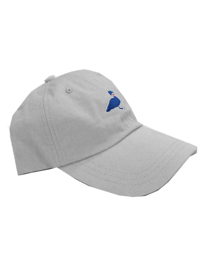 Chrome Cotton Hat