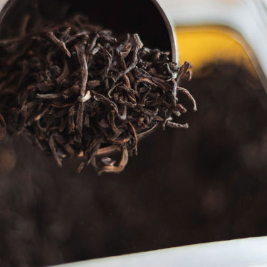 #5 Brewing Fundamentals: <br> Tea & Ratio