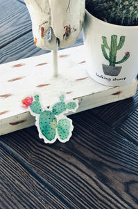 THE CACTUS STICKER