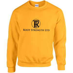 RS Unisex Heavy Blend - Sweatshirt