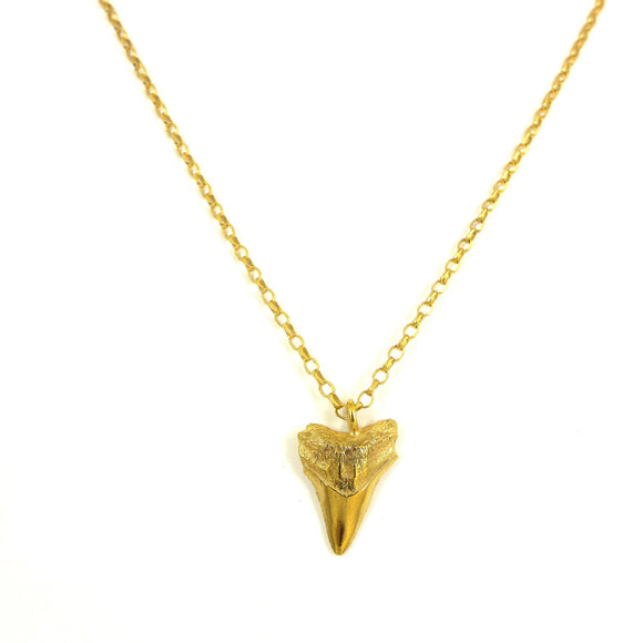 gold sharks tooth necklace