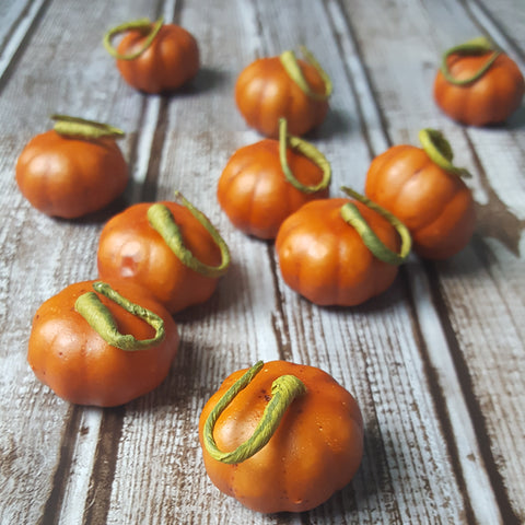 Mini Pumpkins Set of 10