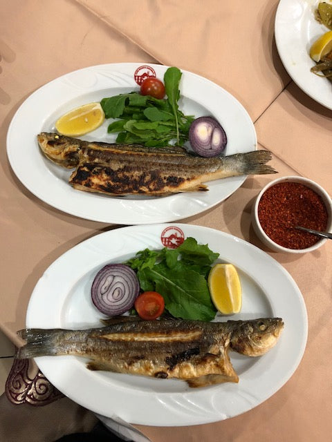 Enjoying fish dinner in Istanbul.
