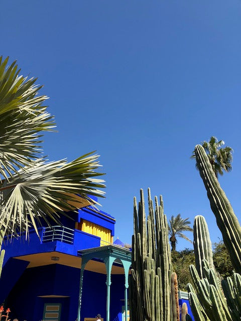 Exploring Marrakech's greenery and scenery. Bright blue sky with deep blue and yellow house next to cacti.
