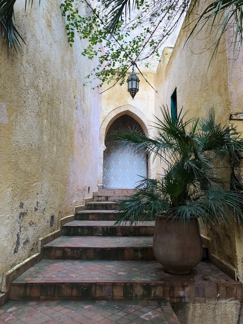 Beautiful entryway way in Fez. Tile stairs leading up to blue and red door under yellow wall with surrounding greenery.