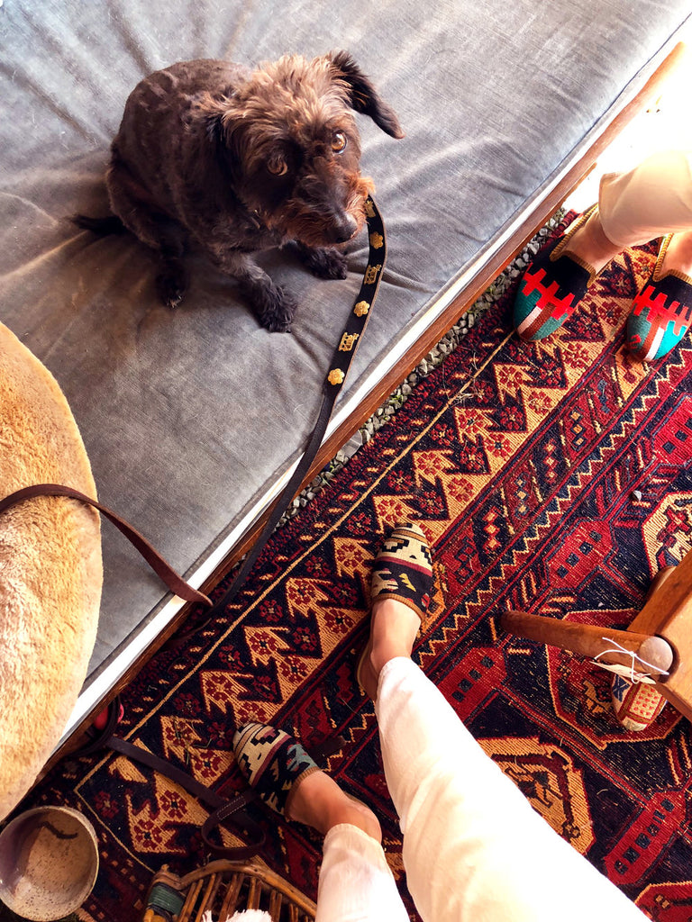 dog on couch next to kilim slides on kilim carpet.
